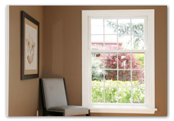 Window Repalcement